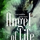 green fairy premade book cover