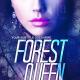 fantasy romance eBook cover