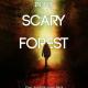 horror suspense thriller eBook cover